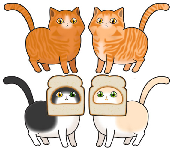 Cats - Inbread/Ginger Tabby